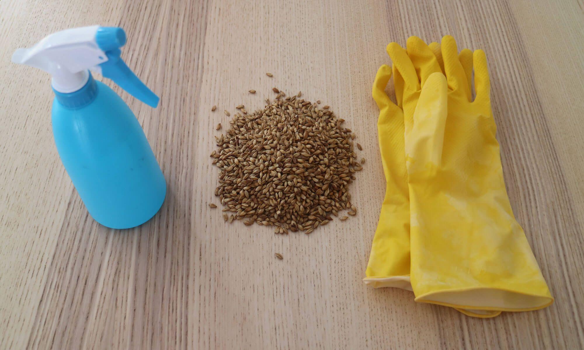 Het schoonmaken en ontsmetten is een belangrijke stap in het brouwproces.